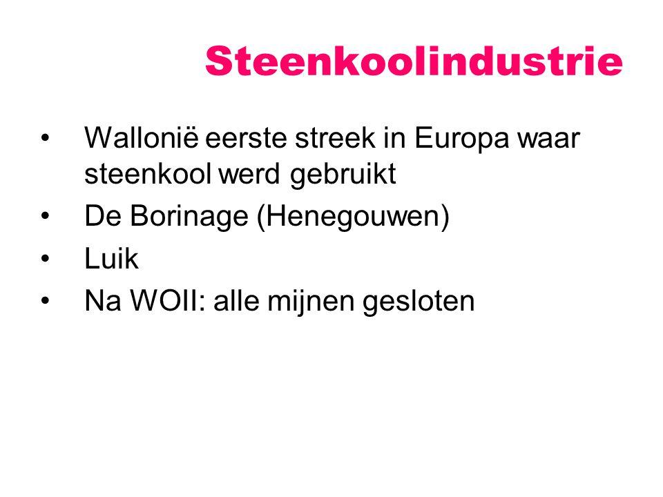 Wallonië eerste streek in Europa waar steenkool werd gebruikt De Borinage (Henegouwen) Luik Na WOII: alle mijnen gesloten Steenkoolindustrie
