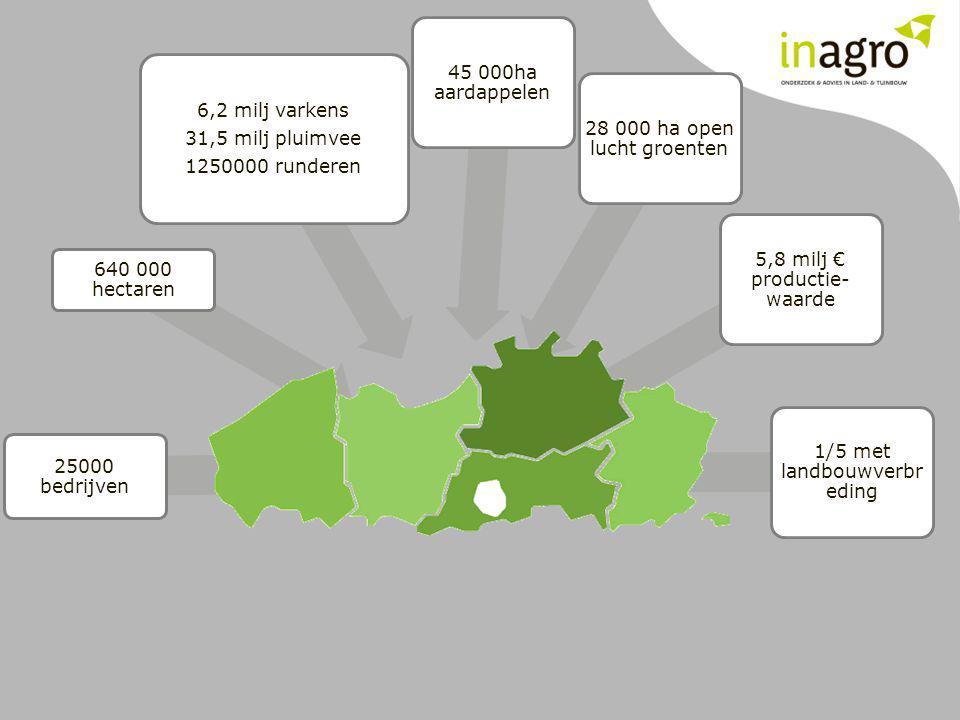 25000 bedrijven 640 000 hectaren 6,2 milj varkens 31,5 milj pluimvee 1250000 runderen 45 000ha aardappelen 28 000 ha open lucht groenten 5,8 milj € pr