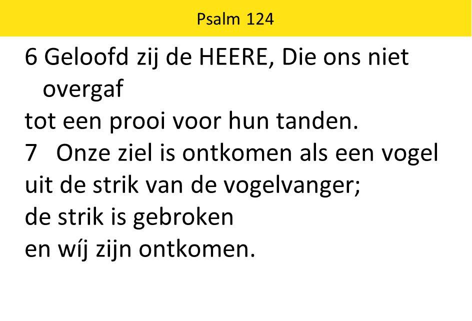 Psalm 124 6 Geloofd zij de HEERE, Die ons niet overgaf tot een prooi voor hun tanden.