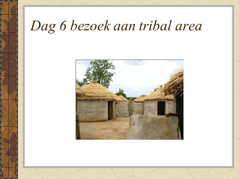 Dag 6 bezoek aan tribal area