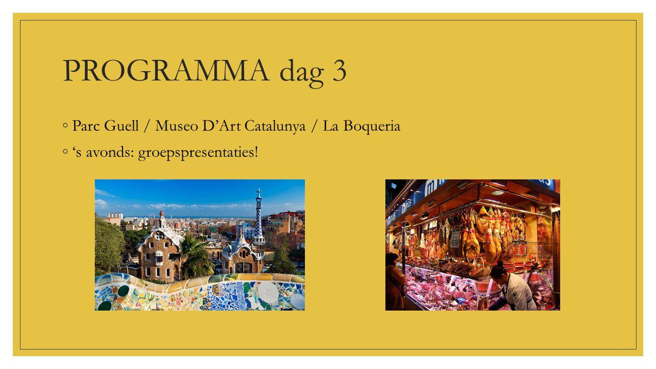 PROGRAMMA dag 3 ◦Parc Guell / Museo D'Art Catalunya / La Boqueria ◦'s avonds: groepspresentaties!
