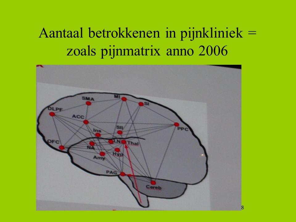 8 Aantaal betrokkenen in pijnkliniek = zoals pijnmatrix anno 2006 8