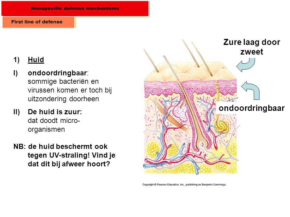 1)Huid I)ondoordringbaar: sommige bacteriën en virussen komen er toch bij uitzondering doorheen II)De huid is zuur: dat doodt micro- organismen ondoor