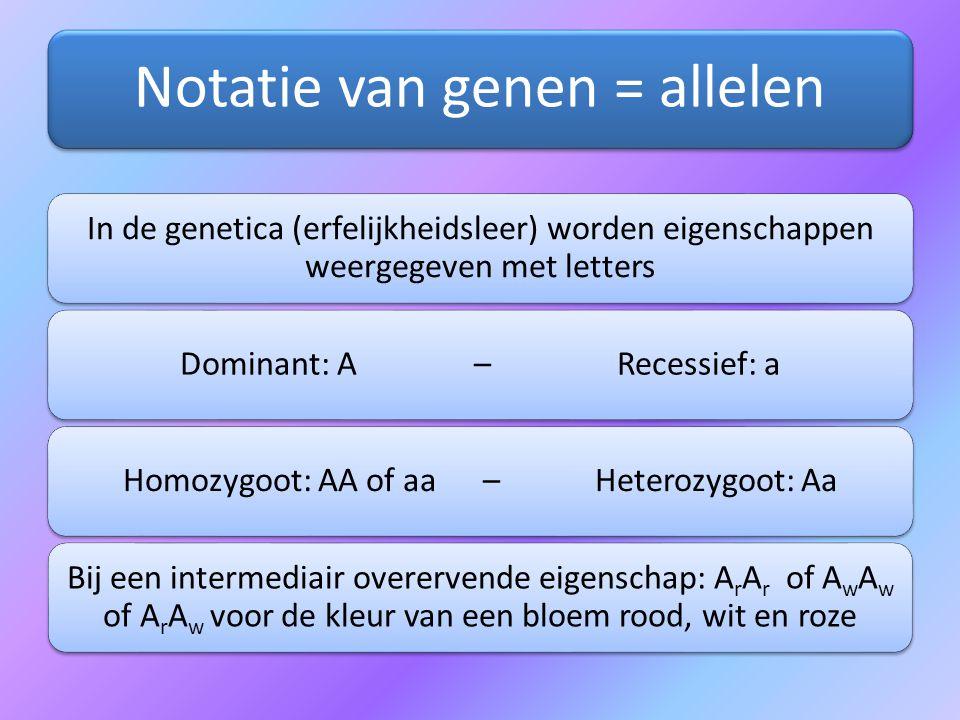 Notatie van genen = allelen In de genetica (erfelijkheidsleer) worden eigenschappen weergegeven met letters Dominant: A – Recessief: aHomozygoot: AA o
