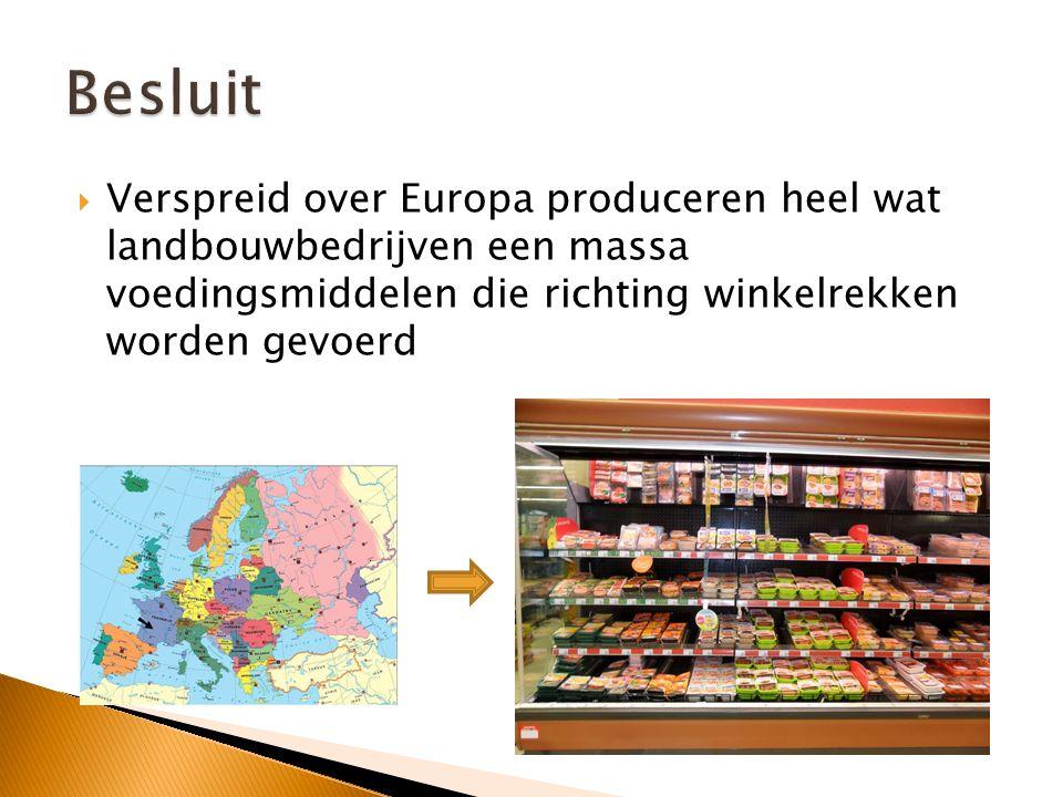 Als tegenmaatregel tegen sancties door de EU en de VS boycot Rusland sinds 7 augustus voedsel uit westerse landen.