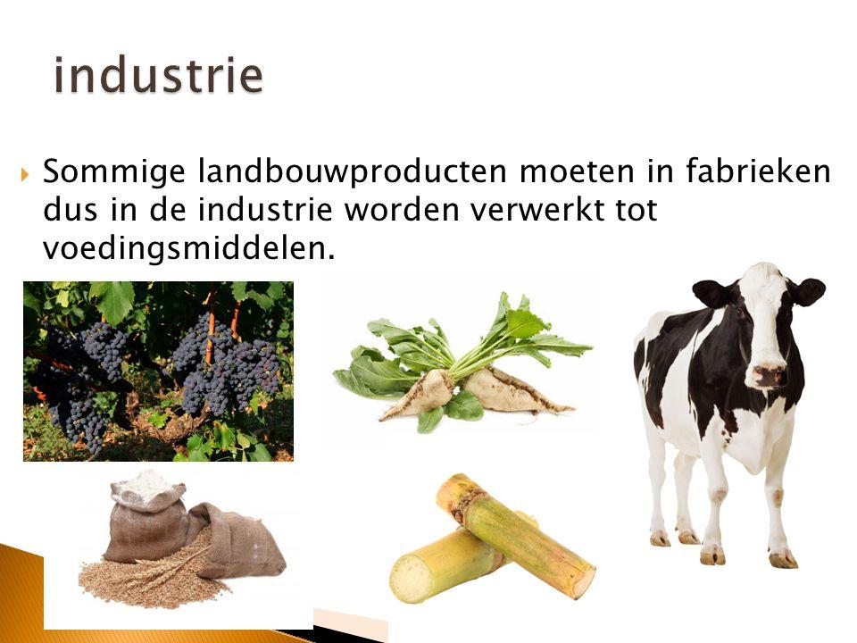  Landbouw in gebieden rond de Middellandse Zee  Landbouwproducten: appelsienen, citroenen, olijven,…