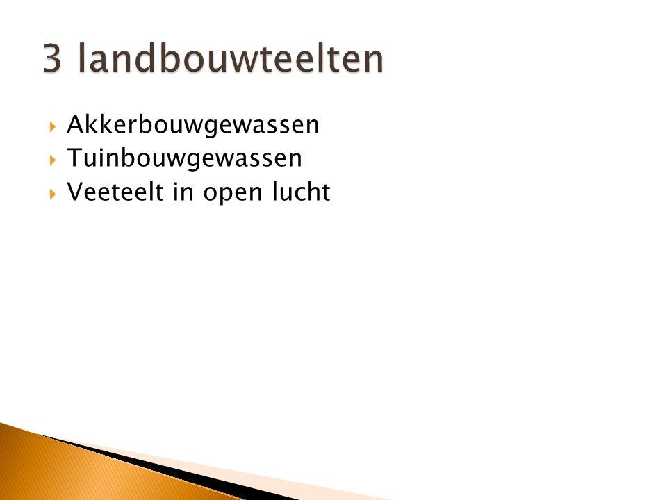  Er bestaan zeer grote verschillen, bv.: Nederland is grote producent van groenten  en fruit t.o.v.
