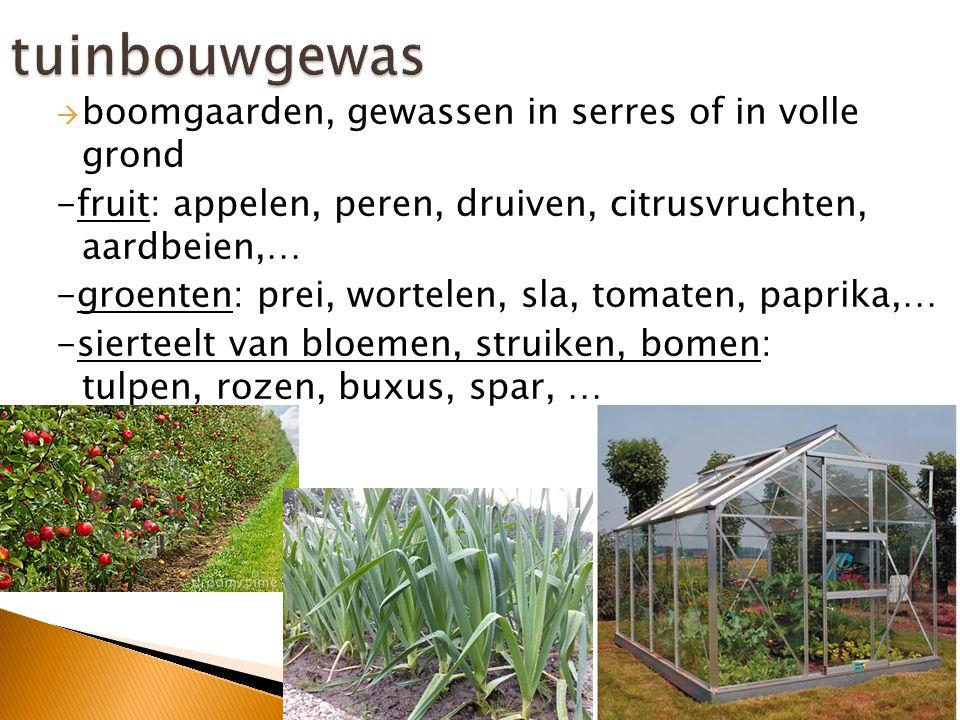  Meer dan één soort landbouw komt voor  Voorbeelden: -akkergewassen (voedergewassen) + veeteelt (runderen)  - tuinbouw (groenten in volle grond) + veeteelt (runderen)