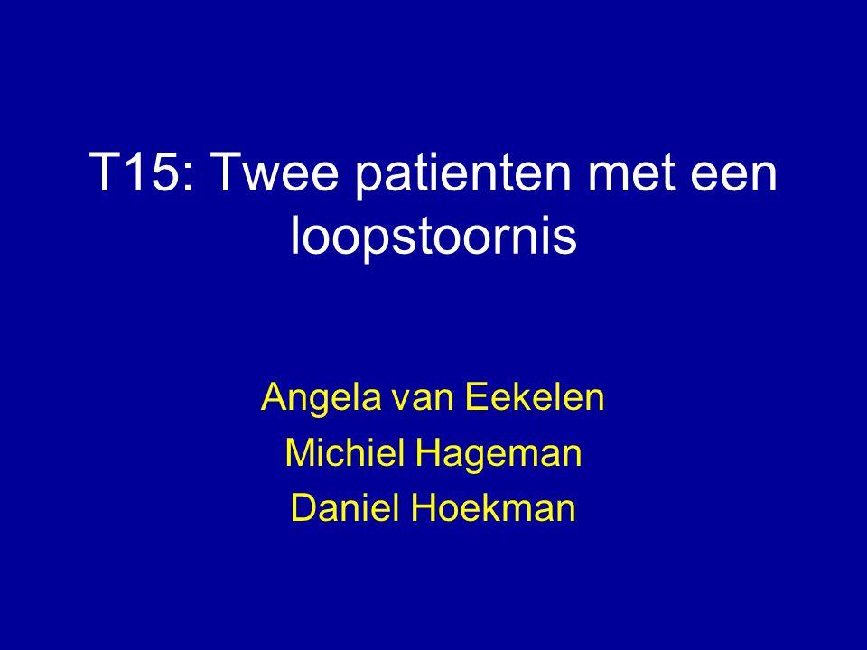 T15: Twee patienten met een loopstoornis Angela van Eekelen Michiel Hageman Daniel Hoekman