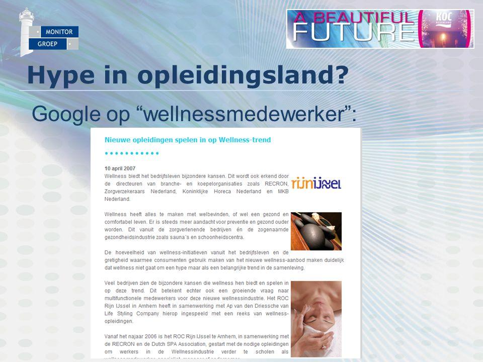 Hype in opleidingsland Google op wellnessmedewerker :