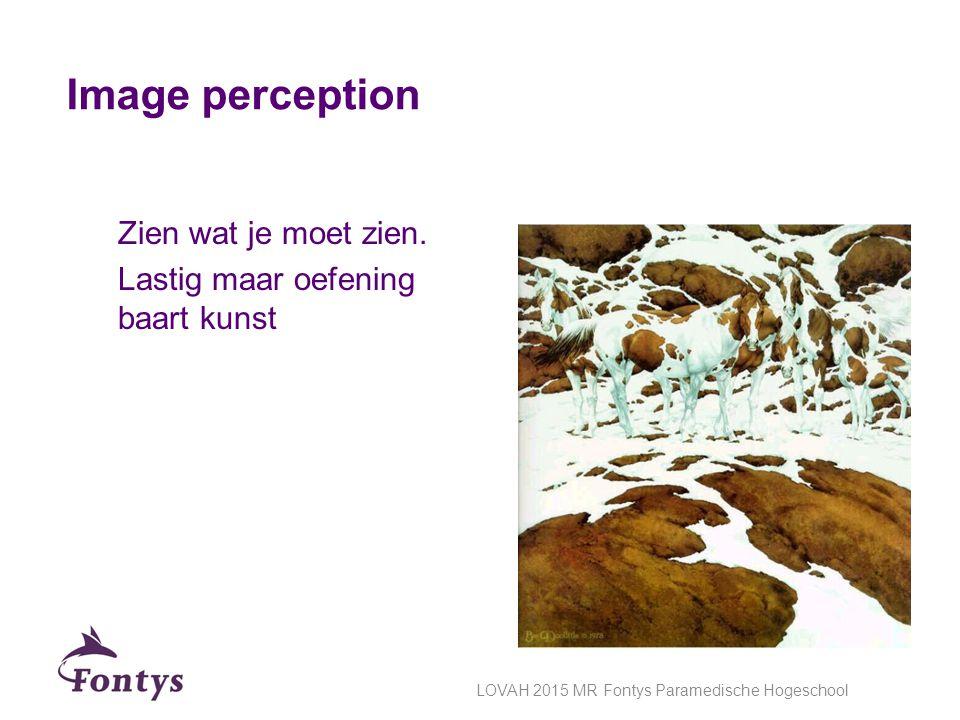 Image perception Zien wat je moet zien. Lastig maar oefening baart kunst LOVAH 2015 MR Fontys Paramedische Hogeschool