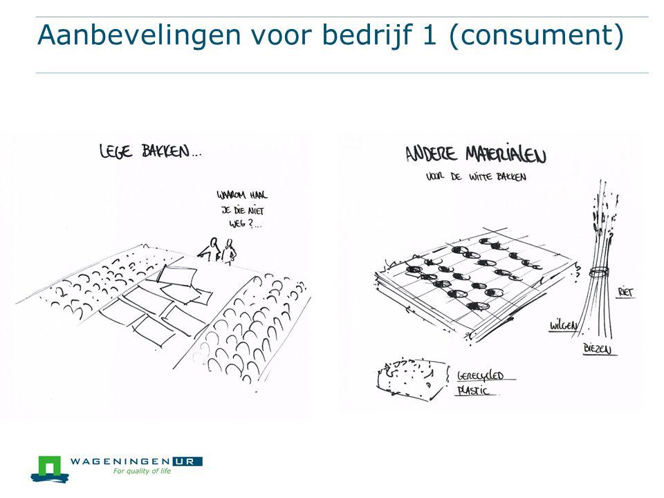 Aanbevelingen voor bedrijf 1 (consument)