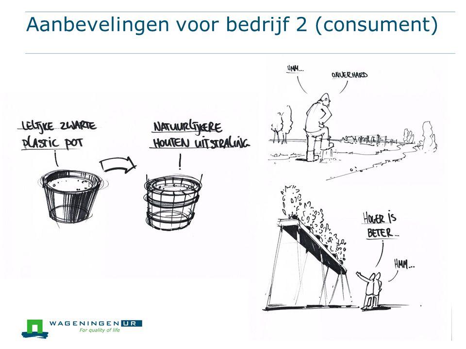 Aanbevelingen voor bedrijf 2 (consument)