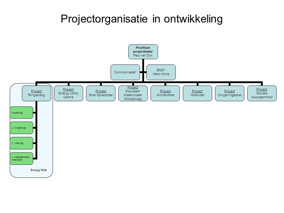 Projectorganisatie in ontwikkeling Energy Web