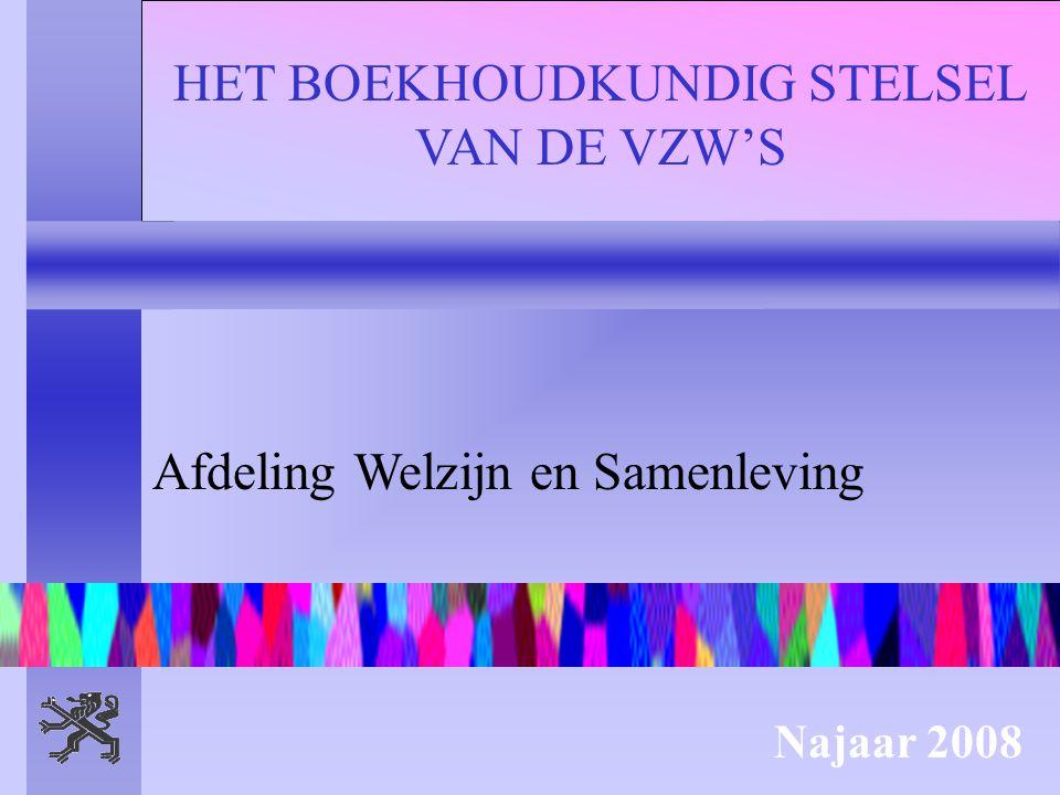 HET BOEKHOUDKUNDIG STELSEL VAN DE VZW'S Afdeling Welzijn en Samenleving Najaar 2008