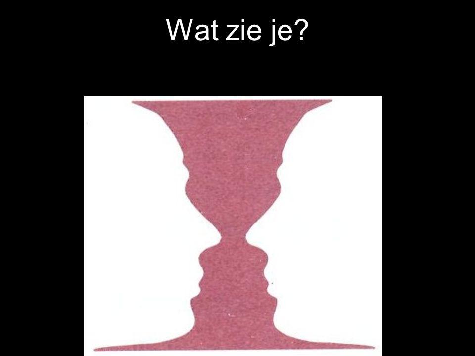 Wat zie je?