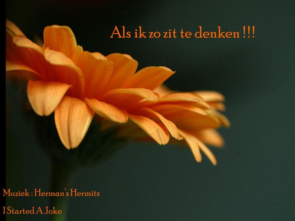 Als ik zo zit te denken ! ! ! Muziek : Herman's Hermits I Started A Joke