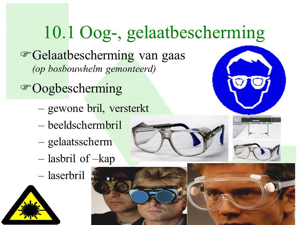 6 FGelaatbescherming van gaas (op bosbouwhelm gemonteerd) FOogbescherming –gewone bril, versterkt –beeldschermbril –gelaatsscherm –lasbril of –kap –la