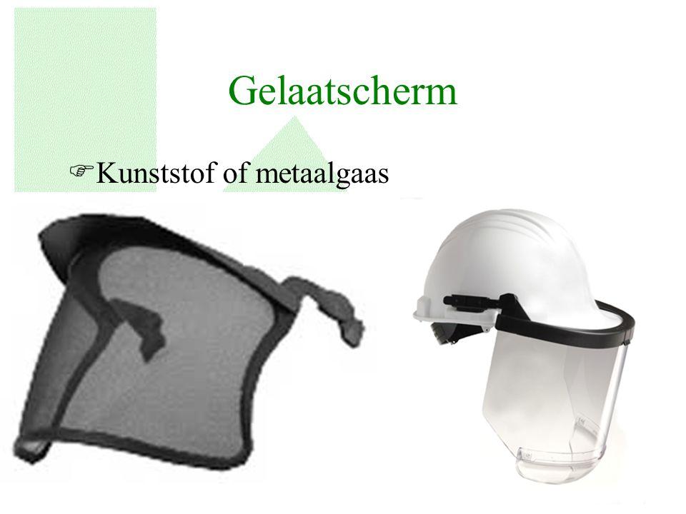 Gelaatscherm FKunststof of metaalgaas 9
