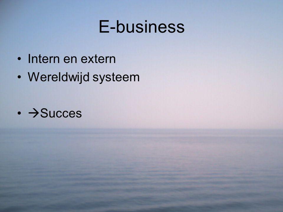E-business Intern en extern Wereldwijd systeem  Succes
