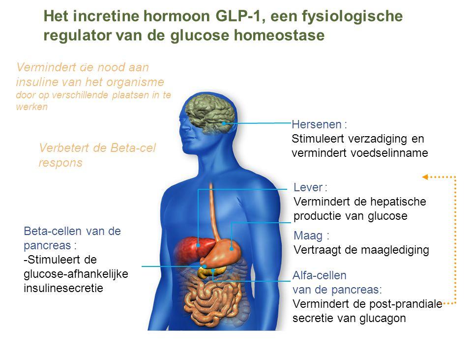 Het incretine hormoon GLP-1, een fysiologische regulator van de glucose homeostase Beta-cellen van de pancreas : -Stimuleert de glucose-afhankelijke insulinesecretie Alfa-cellen van de pancreas: Vermindert de post-prandiale secretie van glucagon Maag : Vertraagt de maaglediging Hersenen : Stimuleert verzadiging en vermindert voedselinname Lever : Vermindert de hepatische productie van glucose Verbetert de Beta-cel respons Vermindert de nood aan insuline van het organisme door op verschillende plaatsen in te werken s