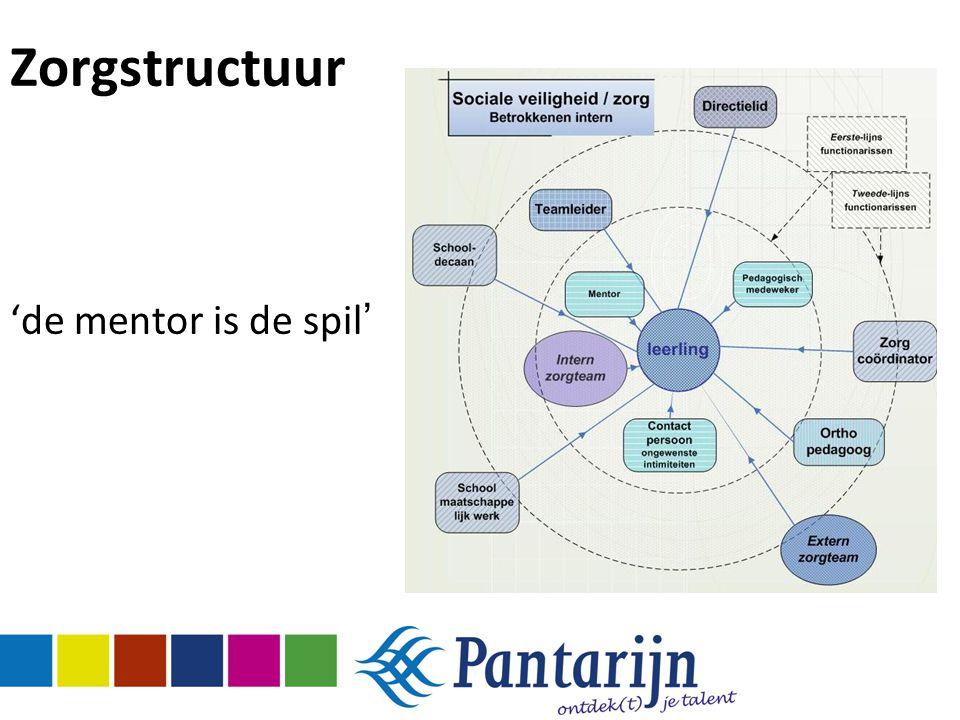 Zorgstructuur 'de mentor is de spil '