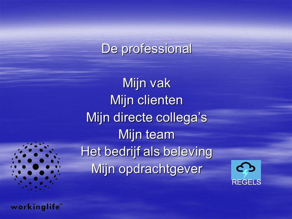 De professional Mijn vak Mijn clienten Mijn directe collega's Mijn team Het bedrijf als beleving Mijn opdrachtgever REGELS