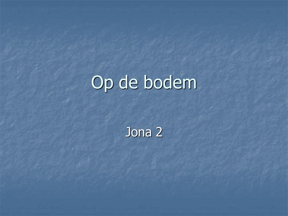 Op de bodem Jona 2