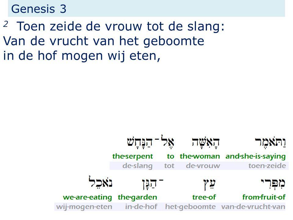 Genesis 3 2 Toen zeide de vrouw tot de slang: Van de vrucht van het geboomte in de hof mogen wij eten,
