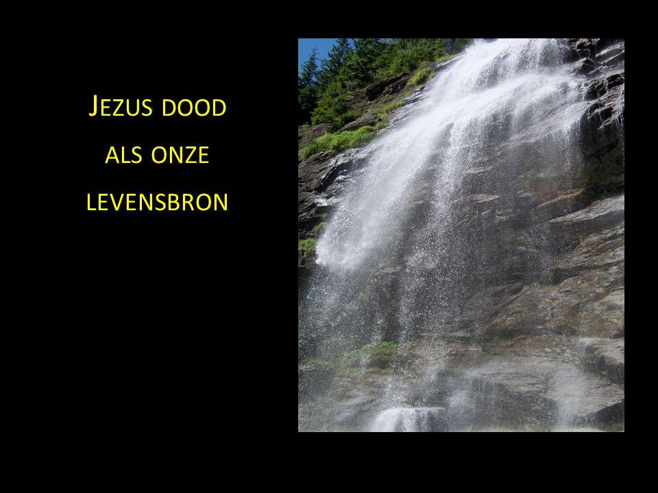 J EZUS DOOD ALS ONZE LEVENSBRON
