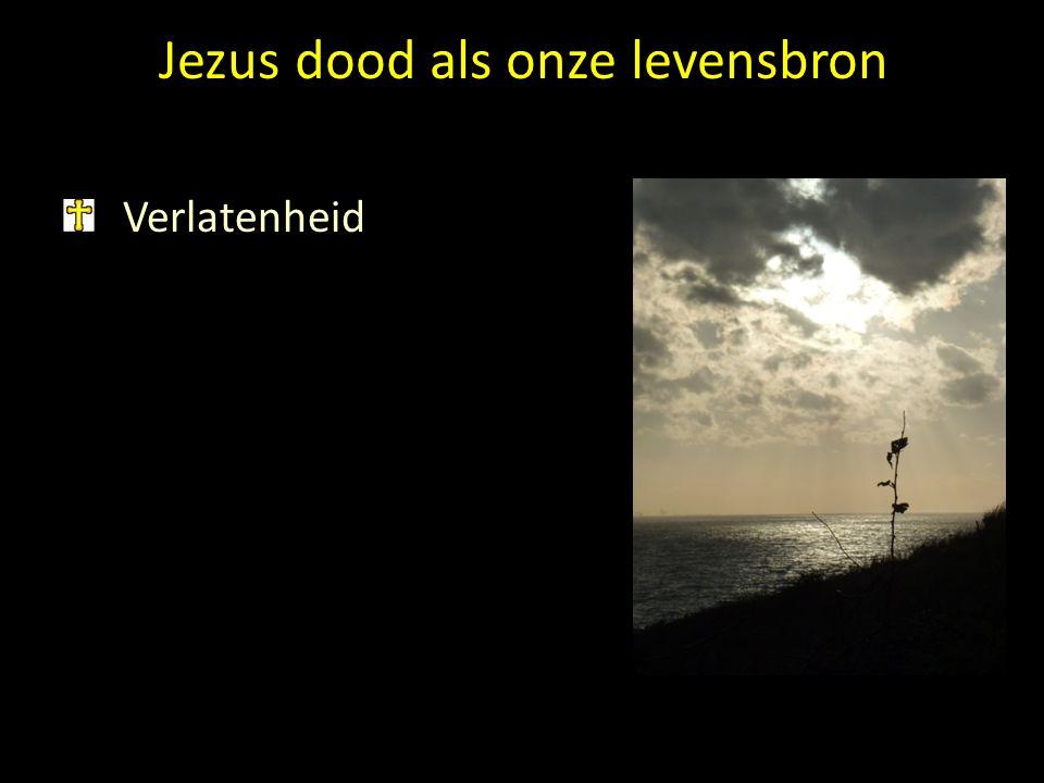 Jezus dood als onze levensbron Verlatenheid