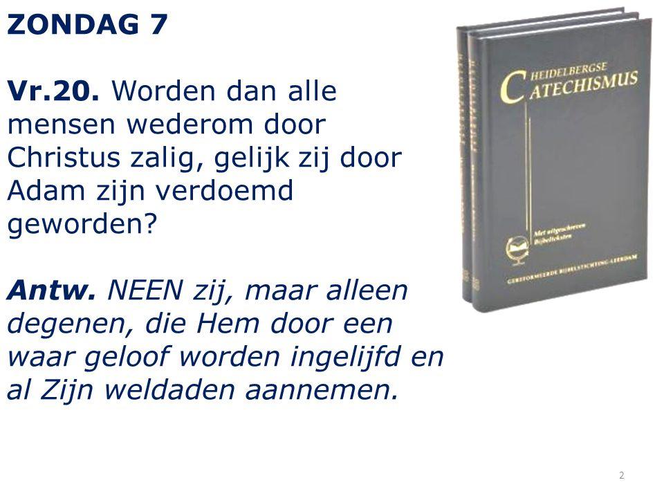 ZONDAG 7 Vr.20.