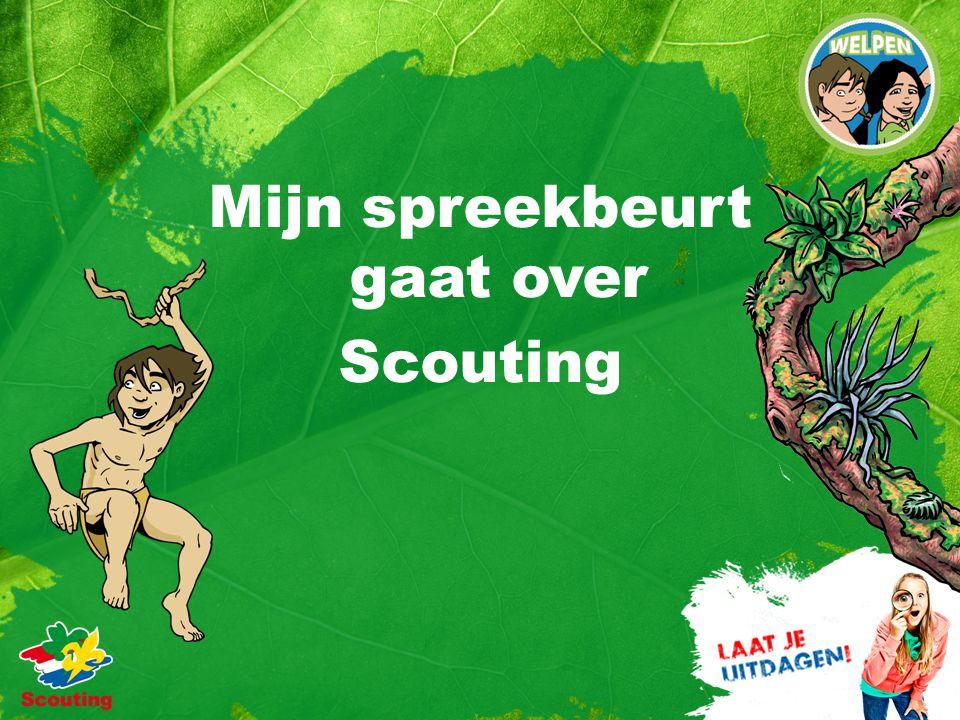 Mijn spreekbeurt gaat over Scouting