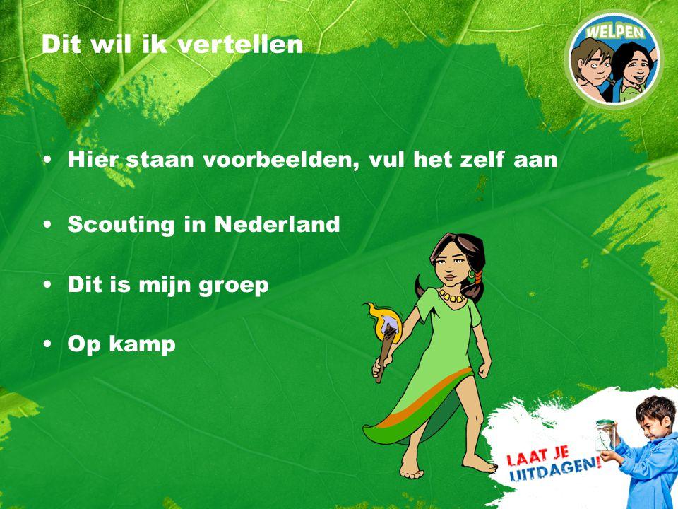 Hier staan voorbeelden, vul het zelf aan Scouting in Nederland Dit is mijn groep Op kamp Dit wil ik vertellen