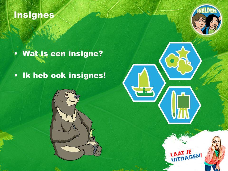 Insignes Wat is een insigne? Ik heb ook insignes!