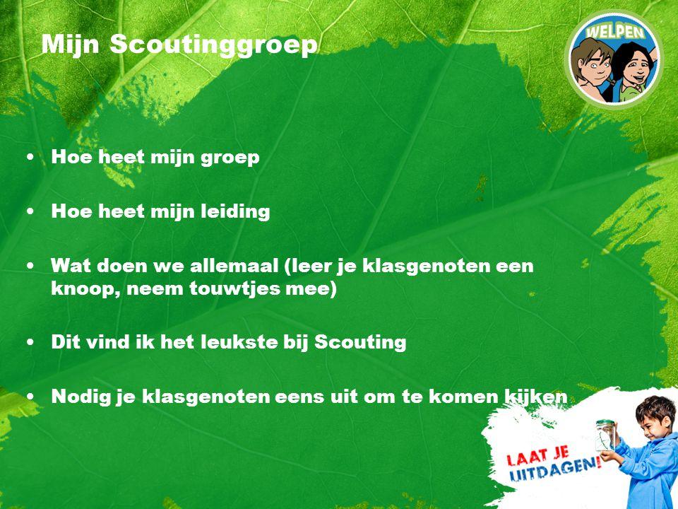 Mijn Scoutinggroep Hoe heet mijn groep Hoe heet mijn leiding Wat doen we allemaal (leer je klasgenoten een knoop, neem touwtjes mee) Dit vind ik het leukste bij Scouting Nodig je klasgenoten eens uit om te komen kijken