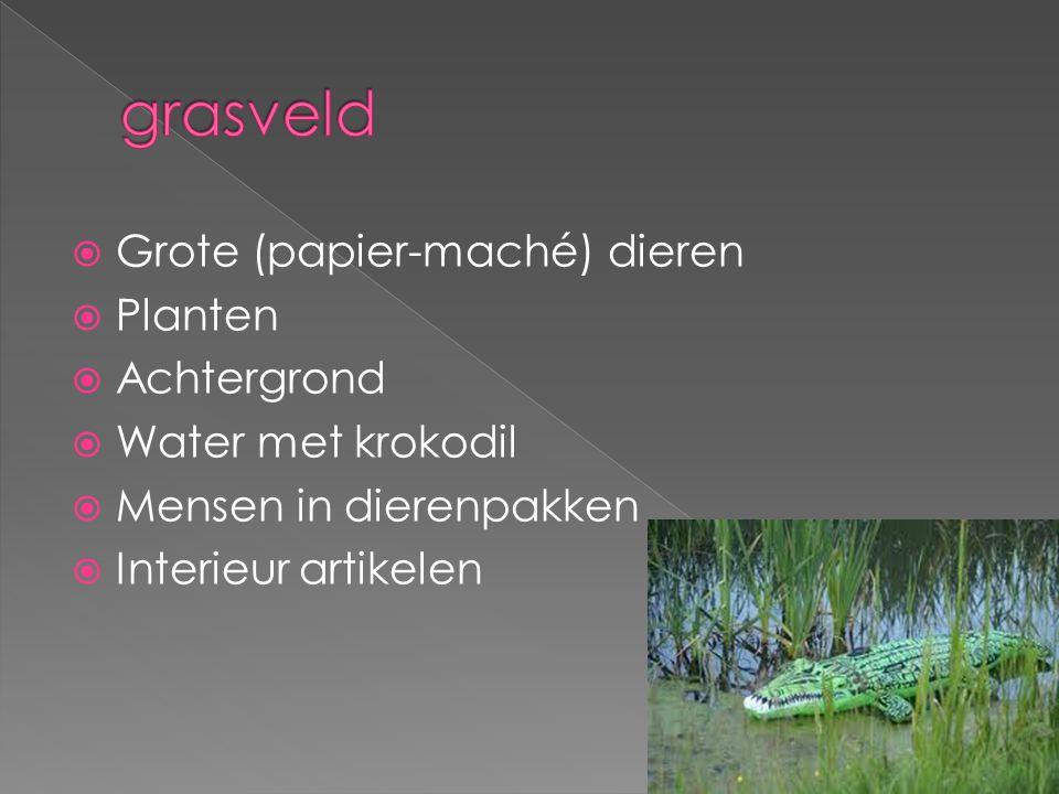  Grote (papier-maché) dieren  Planten  Achtergrond  Water met krokodil  Mensen in dierenpakken  Interieur artikelen
