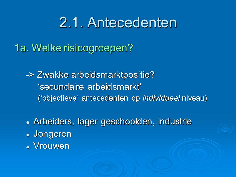 2.1. Antecedenten 1a. Welke risicogroepen. -> Zwakke arbeidsmarktpositie.