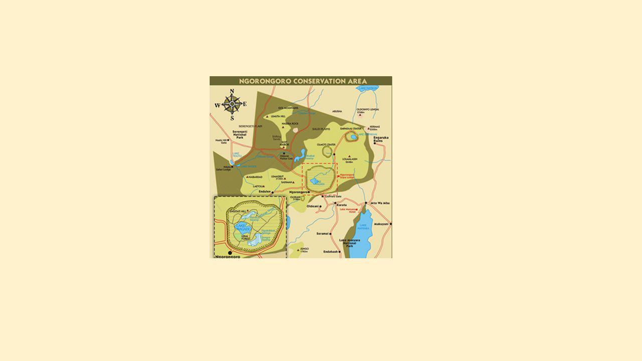 Ngorongoro Conservation Area: groene hooglanden' slapende vulkanen en wildrijke kraters – 1 woord: prachtig Hoogtepunt: de enorme Ngorongorokrater, één van s werelds grootste natuurspektakels.