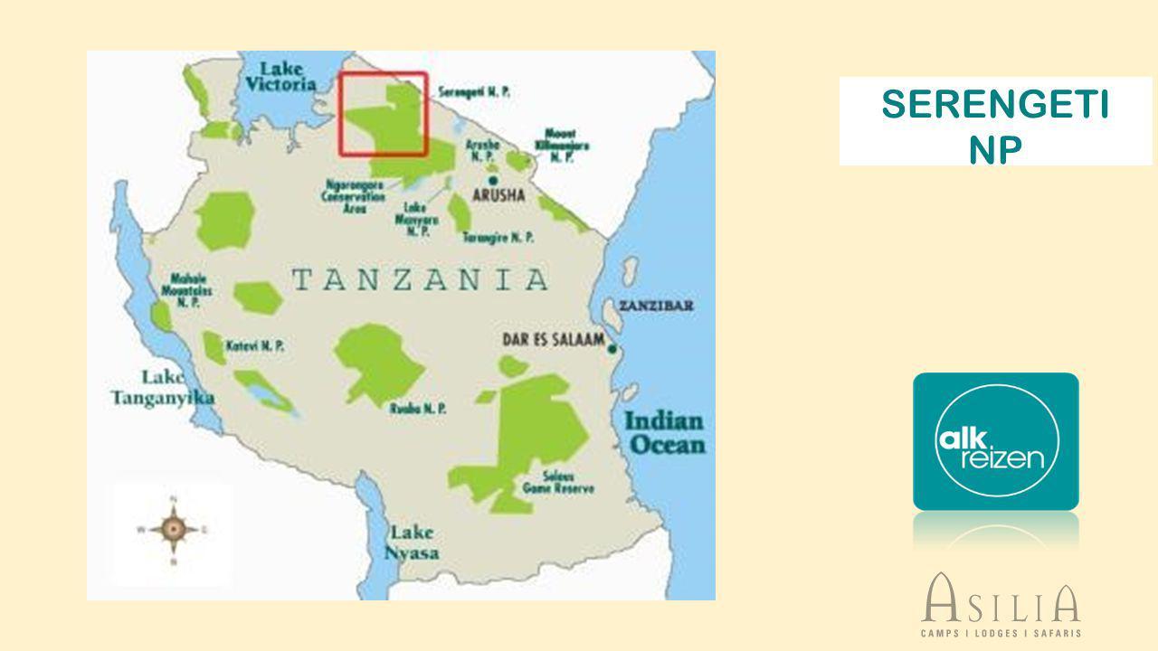 Serengeti, naam afgeleid van de Masai-taal (Siringet), betekent letterlijk Eindeloze vlaktes een streek van savannes en boslandschappen, verdeeld over het noorden van Tanzania en het zuiden van Kenia,savannesboslandschappenTanzaniaKenia oppervlakte van +/- 30.000 km² - 80% ligt in Tanzania zonder twijfel het beroemdste wildpark ter wereld - uniek in zijn soort vanwege de ecologische waarde en schoonheid.
