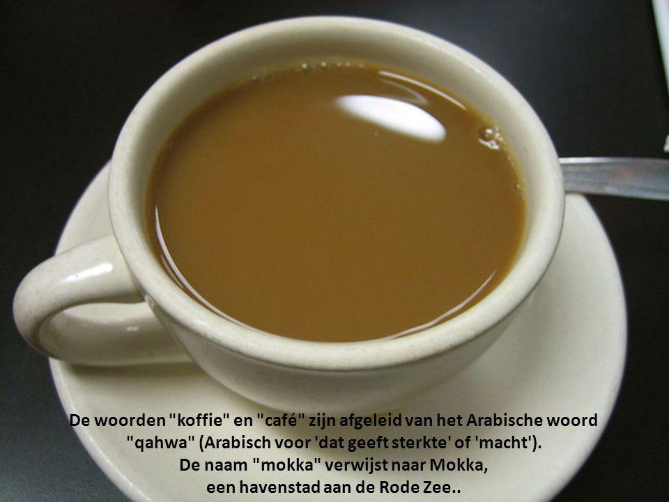 De Hollanders waren de eerste koffiehandelaars die de koffie grootschalig naar Europa brachten. Amsterdam was het eerste, en lange tijd het belangrijk