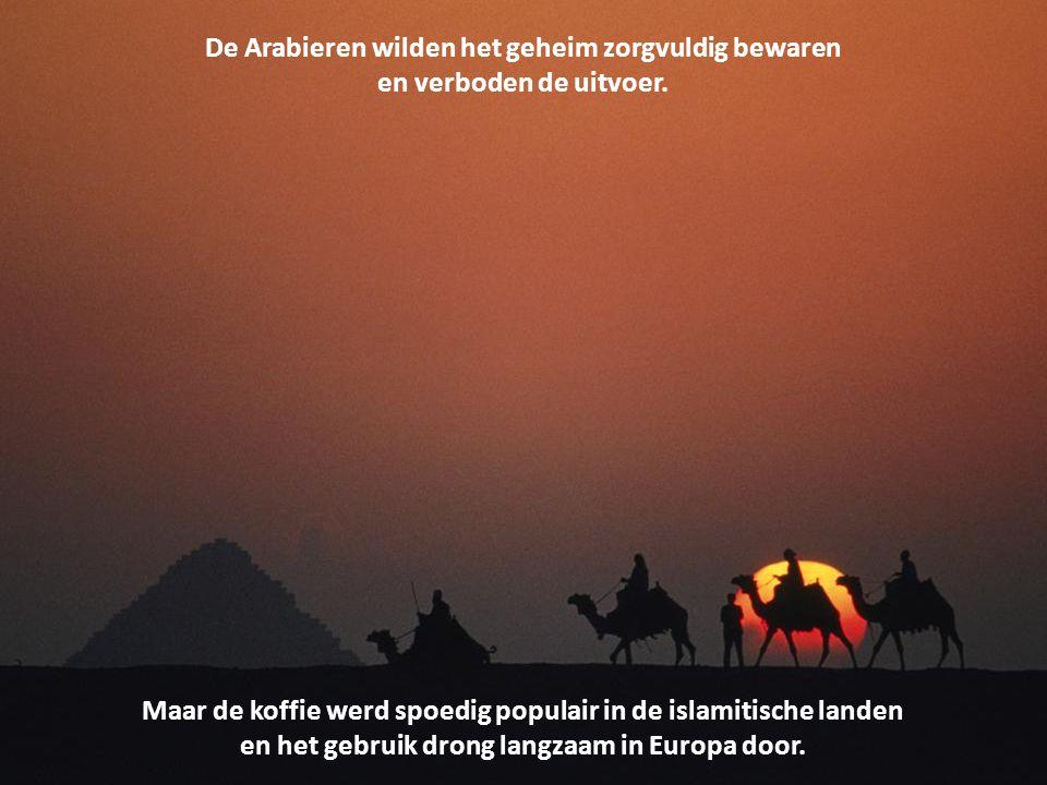 Volgens de legende merkte een Arabische herder dat zijn geiten na het eten van de bessen van een zekere struik erg opgewonden waren.