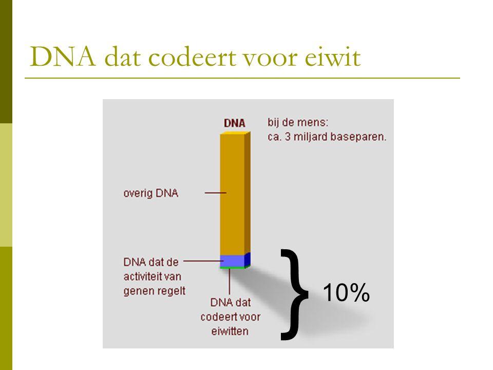 DNA dat codeert voor eiwit } 10%