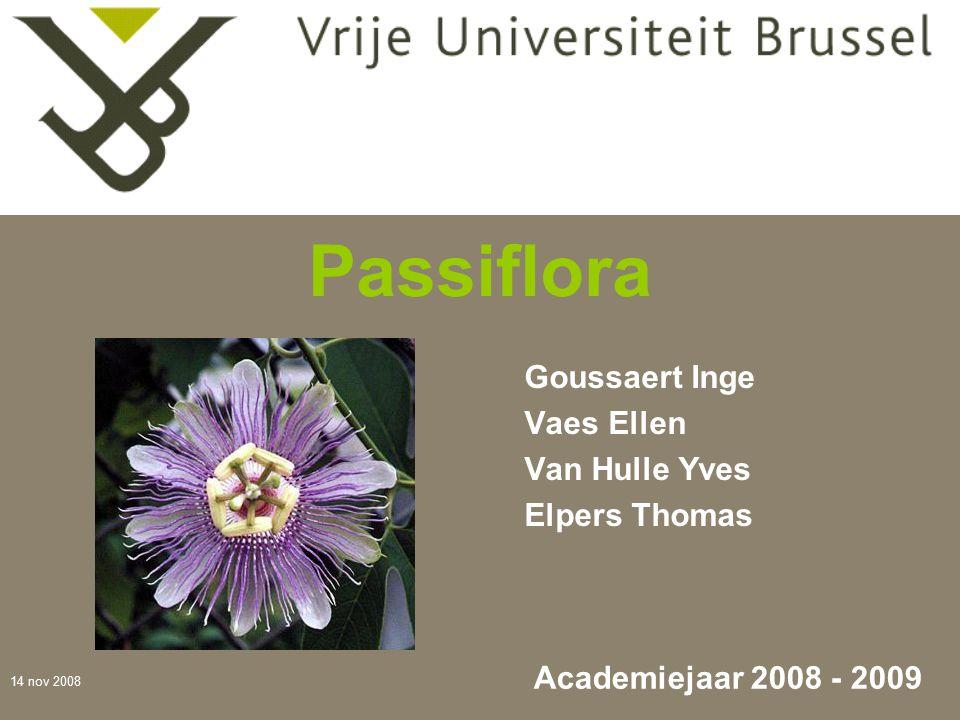 14 nov 2008 Passiflora Goussaert Inge Vaes Ellen Van Hulle Yves Elpers Thomas Academiejaar 2008 - 2009