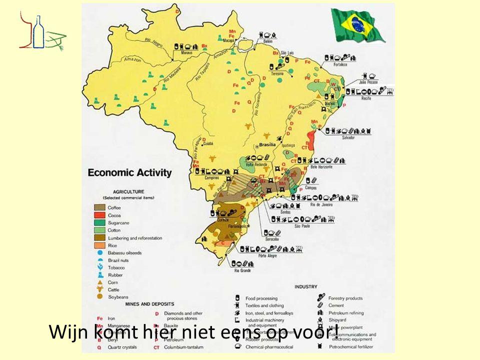 Enorm land, grote verschillen (2) Brazilië is momenteel het vijfde wijnproducerde land van het zuidelijk halfrond met ruim 83.000 hectare, waarvan slechts 10.000 ha met vitis vinifera.