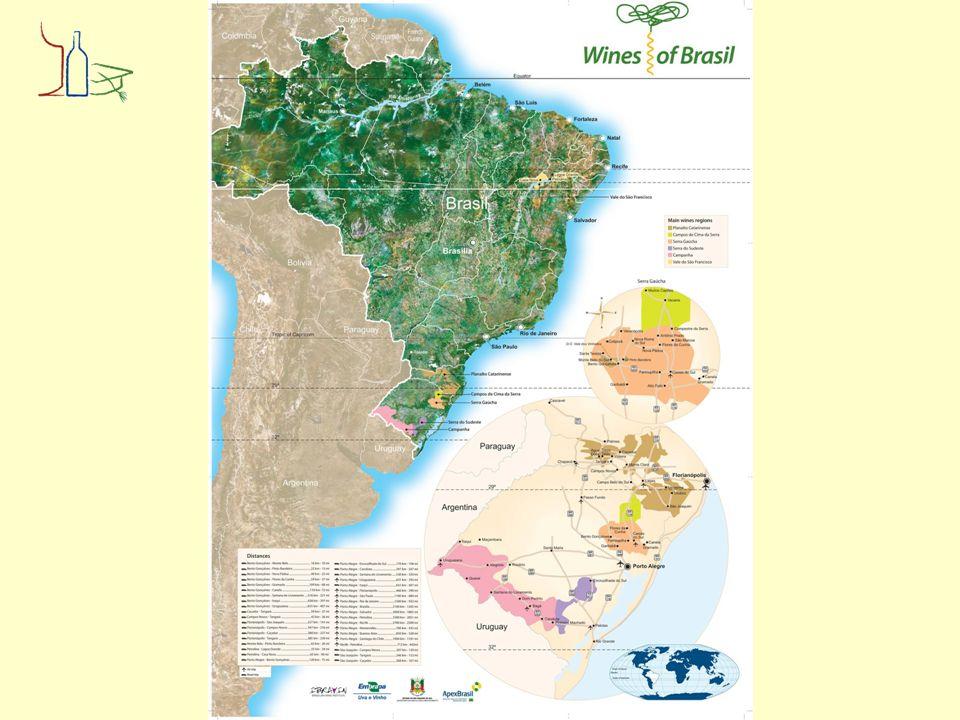 De wijngebieden Serra Gaúcha, goed voor bijna 85% van de Braziliaanse productie van tafelwijn, 450-750 meter hoog Campanha Gaúcha 200- 450 meter Serra do Sudeste 200-450 meter Campos de Cima da Serra, ca 1.000 meter hoog Planalto Catarinense 900- 1.415 meter Vale do São Francisco in het noordoosten