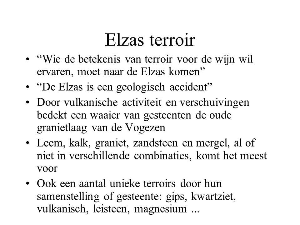 """Elzas terroir """"Wie de betekenis van terroir voor de wijn wil ervaren, moet naar de Elzas komen"""" """"De Elzas is een geologisch accident"""" Door vulkanische"""