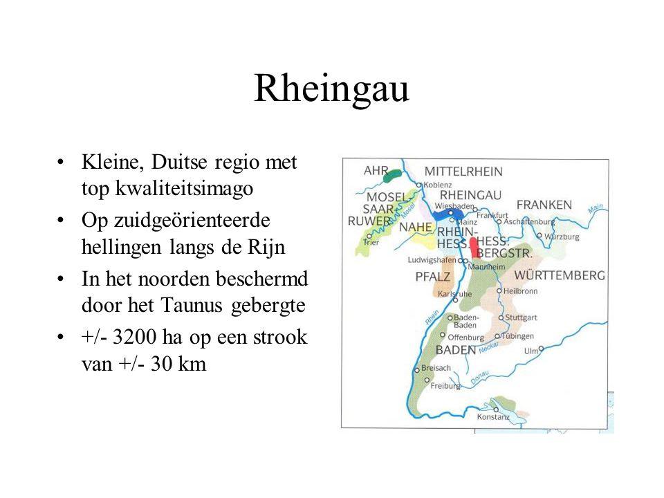 Rheingau Kleine, Duitse regio met top kwaliteitsimago Op zuidgeörienteerde hellingen langs de Rijn In het noorden beschermd door het Taunus gebergte +
