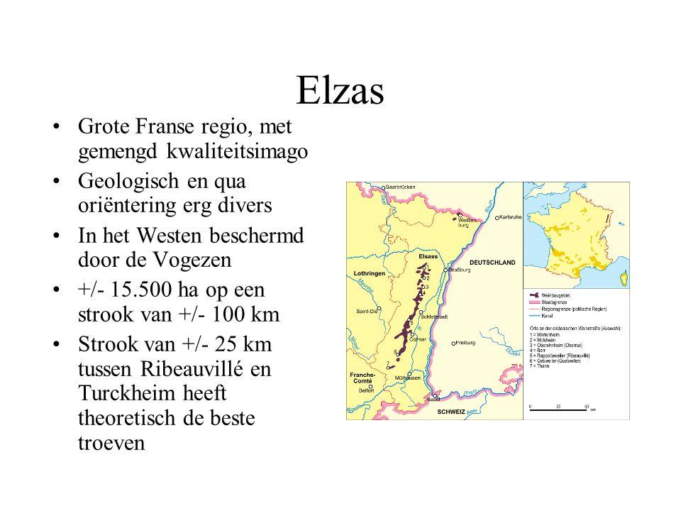 Elzas Grote Franse regio, met gemengd kwaliteitsimago Geologisch en qua oriëntering erg divers In het Westen beschermd door de Vogezen +/- 15.500 ha o