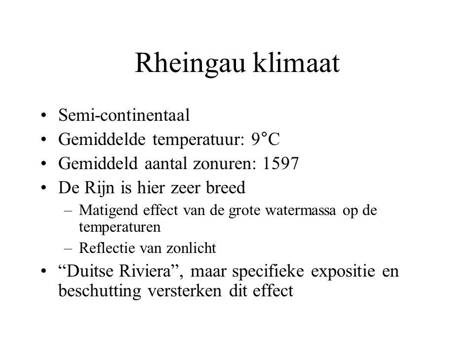 Rheingau klimaat Semi-continentaal Gemiddelde temperatuur: 9°C Gemiddeld aantal zonuren: 1597 De Rijn is hier zeer breed –Matigend effect van de grote